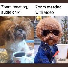 zoom meeting audio only meme, dog - Google Search in 2020 | Really funny  memes, Funny relatable meme… in 2020 | Funny relatable memes, Really funny  memes, Crazy funny memes